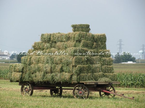 The last time we were in Lancaster County, PA we spotted this Amish farmer's load of hay.