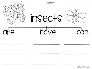 Worksheet Free Insect Worksheets Grade 1 18 best insects images on pinterest insect activities teaching worksheet