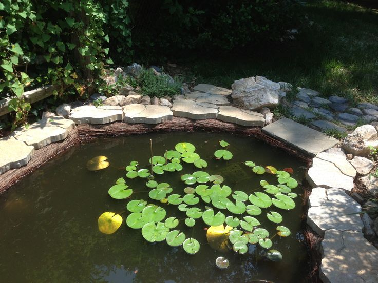 1000 Ideas About Pond Liner On Pinterest Plastic Pond