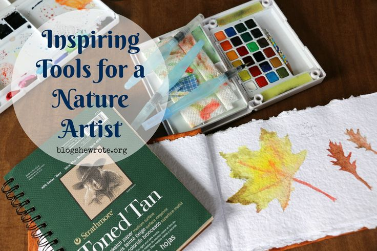 Inspiring Tools for a Nature Artist