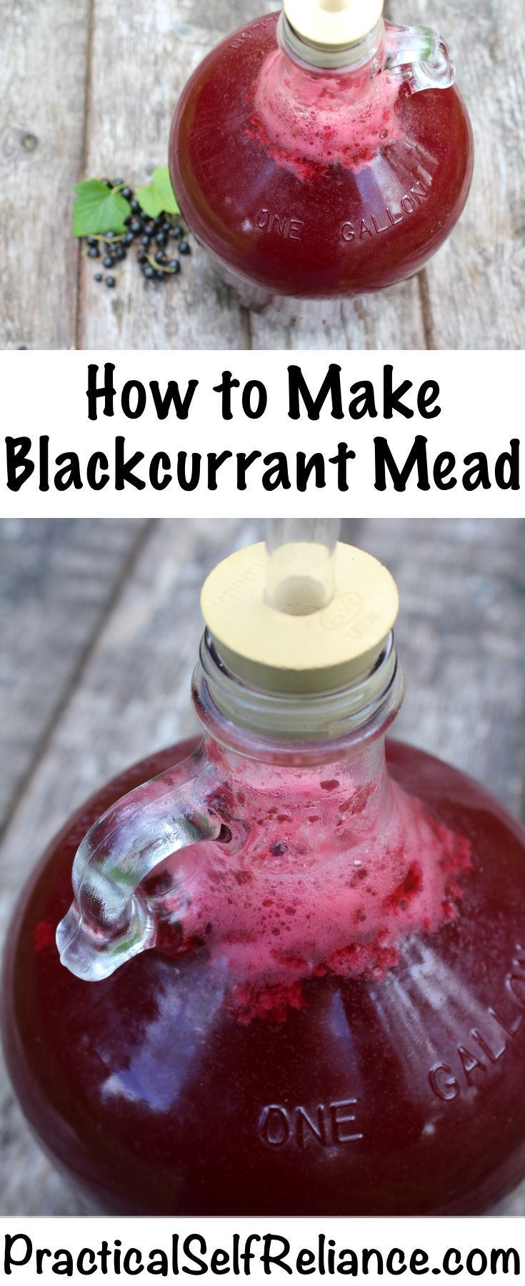 How to Make Blackcurrant Mead - Practical Self Reliance