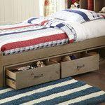 Birch Lane Kids Sumner Bookcase Bed & Reviews | Birch Lane