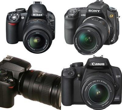 Top 25+ best Dslr camera reviews ideas on Pinterest   Nikon camera ...