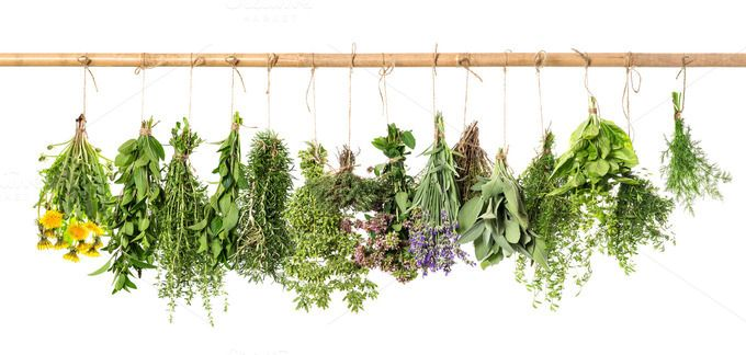 Fresh herbs hanging by LiliGraphie on Creative Market