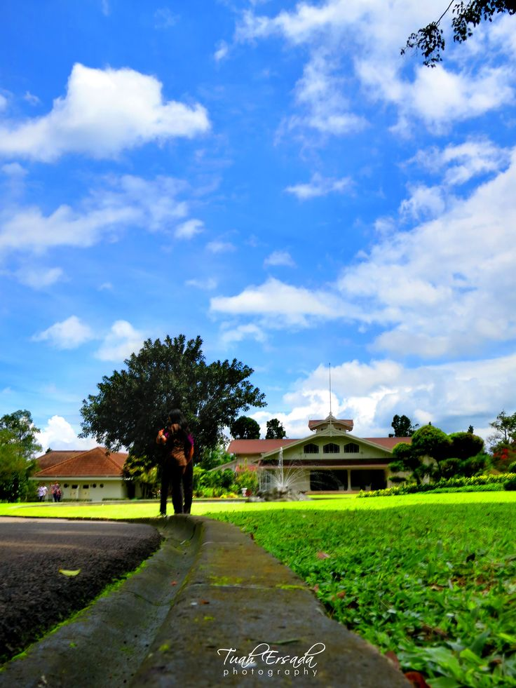 Bogor Presidential Palace, sky, landscape, blue, grass, green, tree, nature, morning, tuah ersada, photography, building