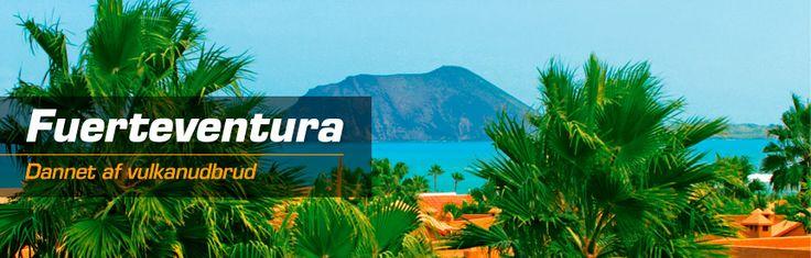 Fuerteventura, den næststørste af De Kanariske Øer, ligger ca. 100 km fra Gran Canaria. Der er ingen tvivl om, at det mest betagende ved Fuerteventura er de helt fantastiske strande. Her findes både perfekte badestrande med kilometerlange områder med lyst, finkornet sand og krystalklart vand – og de mere rå og vilde strande med sort lavasand eller sten og uroligt vand. Turismen er forholdsvis ny på Fuerteventura, faktisk var det i 1966, da lufthavnen ved El Mattoral blev bygge, at det hele…
