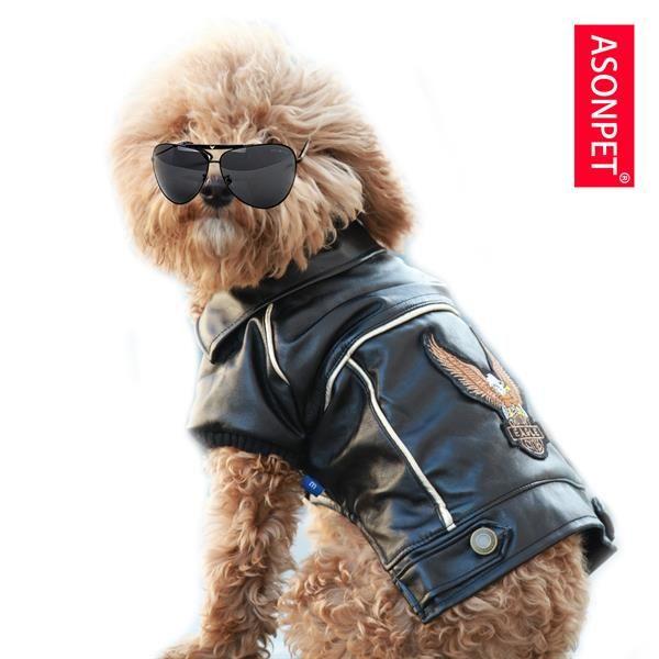 Кожаная куртка для собаки