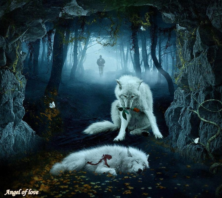 20 best Graphic Arts images on Pinterest | Wolf pictures ...
