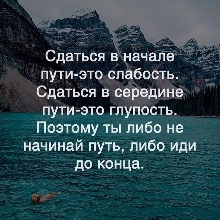 Цитатник)