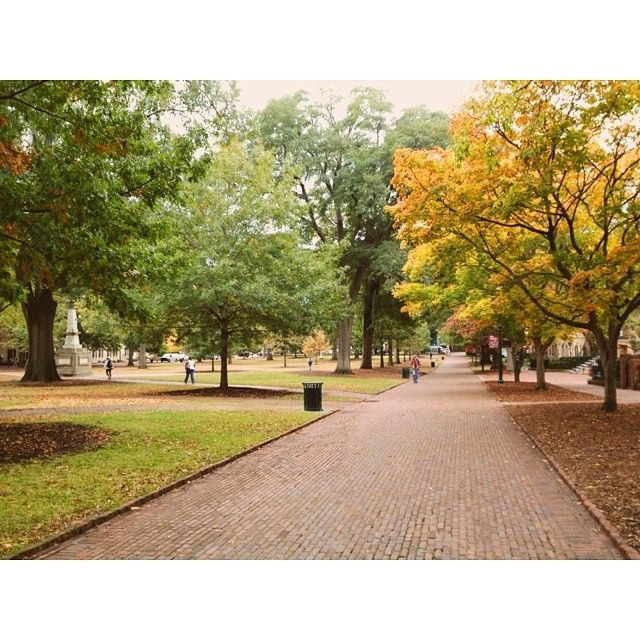 Our iconic #UofSC Horseshoe. Photo by brkfastattarget: http://instagram.com/p/gv2OdzIdhY/