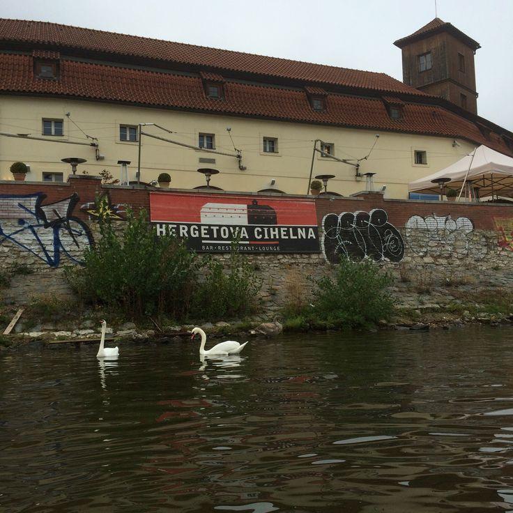 Vltava River, Prague #Moldau