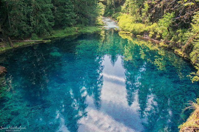 Tamolitch Pool  - McKenzie River