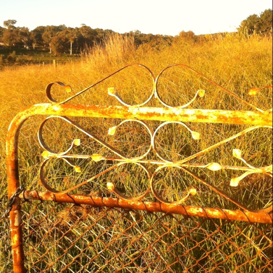 Paddock gate, At my sisters acreage, Orange, NSW, Australia