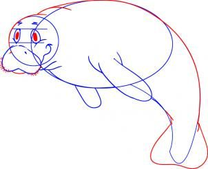how to draw a cartoon manatee step 4