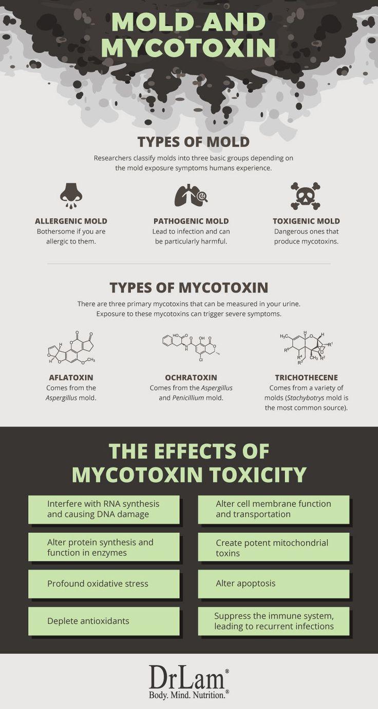 Fundamentals Of Mold Exposure Symptoms And Adrenal Fatigue Syndrome Mold Exposure Symptoms Of Mold Black Mold Symptoms