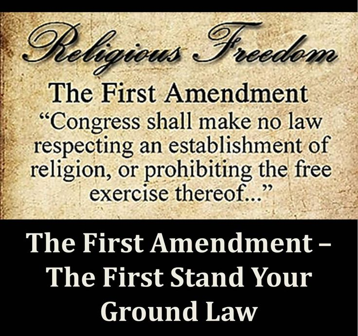 an introduction to the history of first amendment in the us 11 facts about free speech welcome to dosomethingorg freedom of speech was established in the first amendment of the united states constitution in 1791 along with freedom of religion introduction treasures in full.