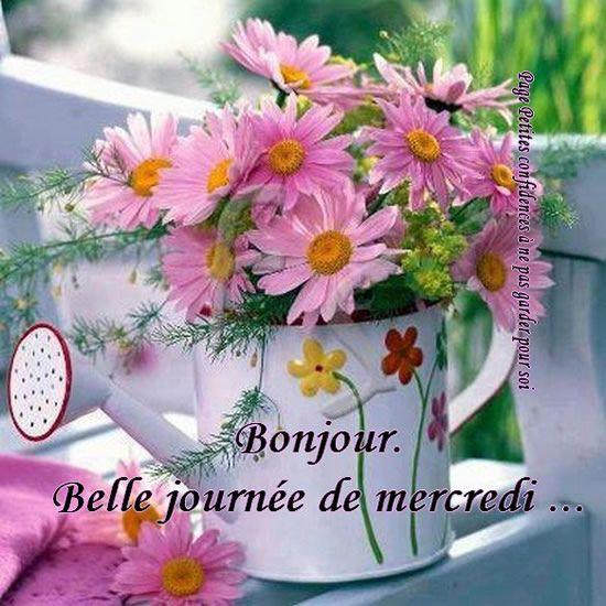 Bonjour. Belle journée de mercredi...