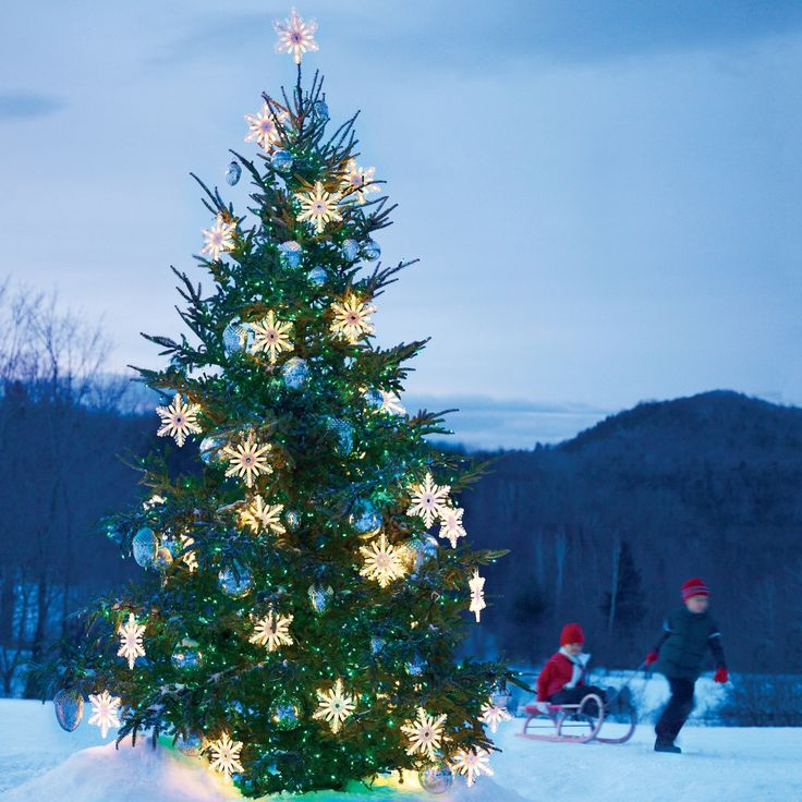 Outdoor christmas tree with snowflakes glass balls and - Snowflake exterior christmas lights ...