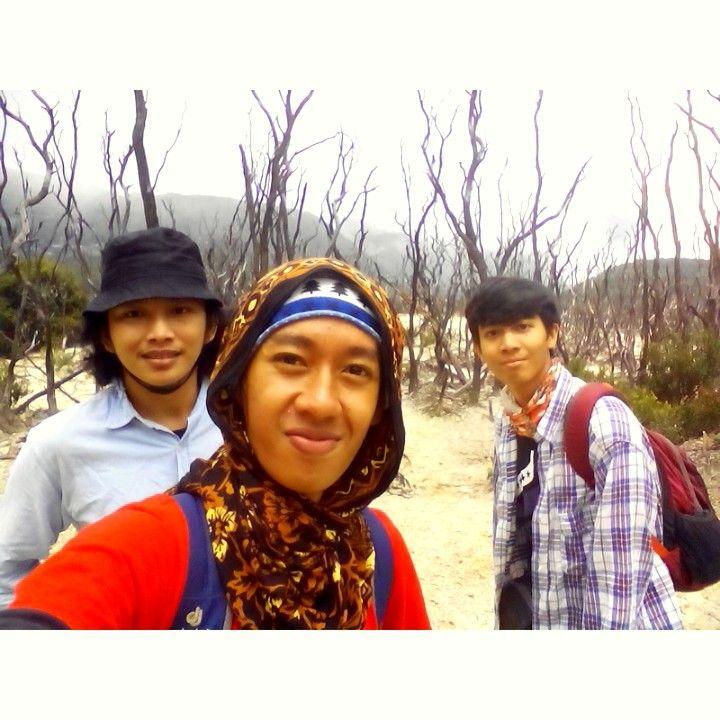 @ Hutan Mati, Mt. Papandayan