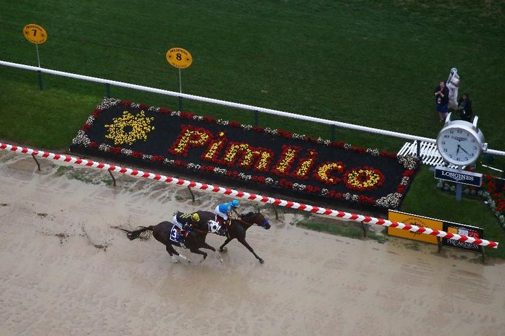 2016 Preakness Stakes Date, Time, Contenders, Odds And Ticket Information - Forbes