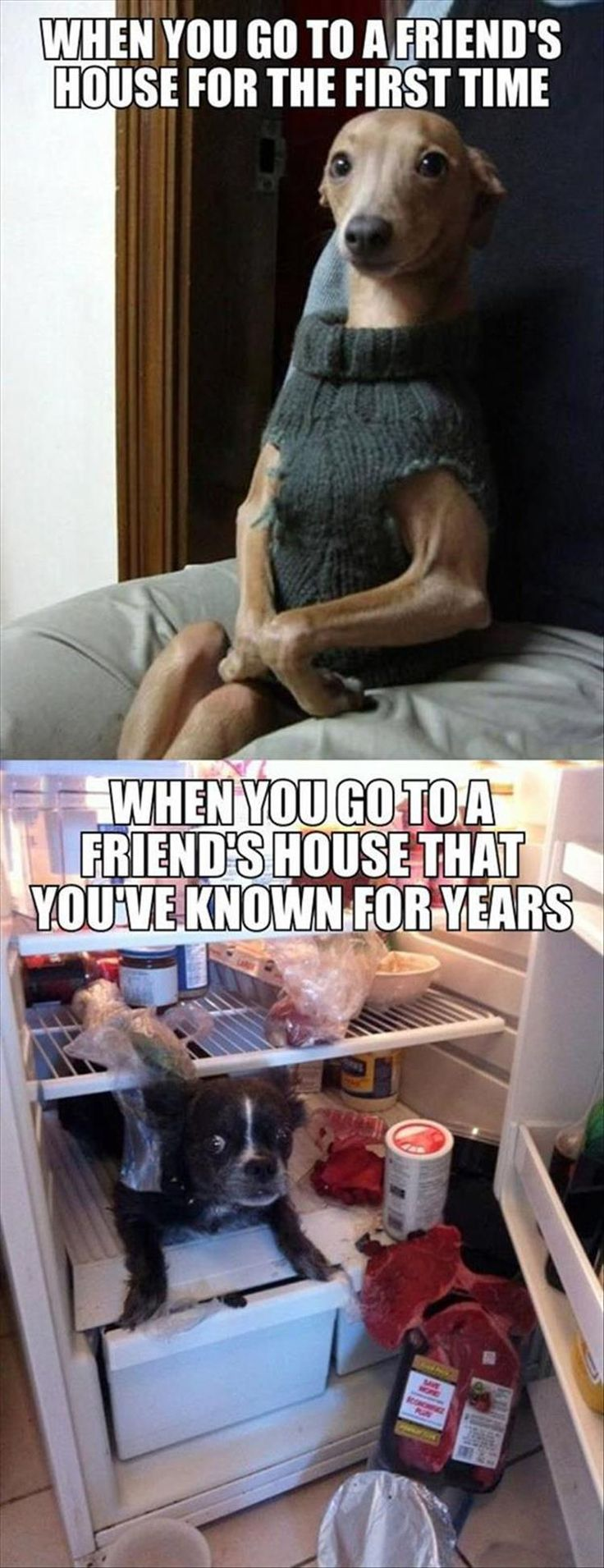 Totally me. Not too long ago I went to a friend's house for the firt time and was exactly like the top picture. Too true...