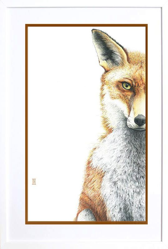 We love this print by local Artist Nikki McIvor 'Interlude with a Fox'