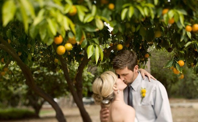 Orange grove venue inspiration