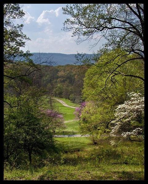 Chattanooga hookup spots