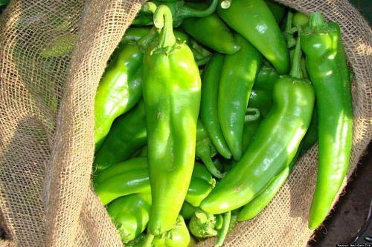 We can all agree that guacamole is amazing. Next time you decide to whip some up, try adding your favorite Young Guns Hatch Green Chile for flavor and spice!  #️ #ChileOnEverything #NewMexico #Hatch #GreenChile