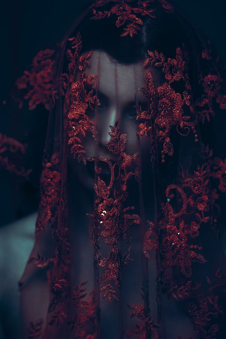 Beautiful Fashion Photography Red Veil