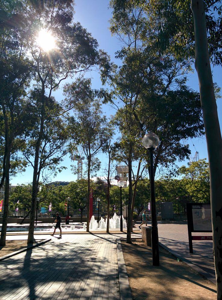 Darling Park, Sydney