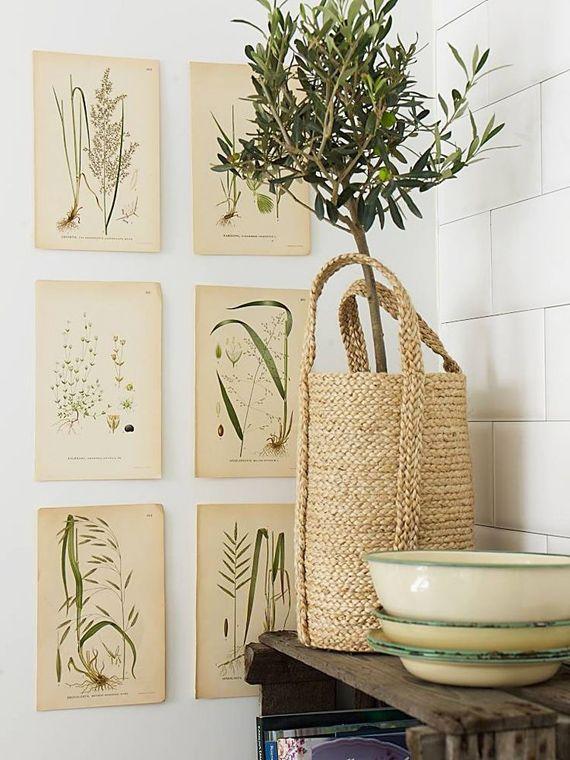 alamodeus: Vintage Botanicals