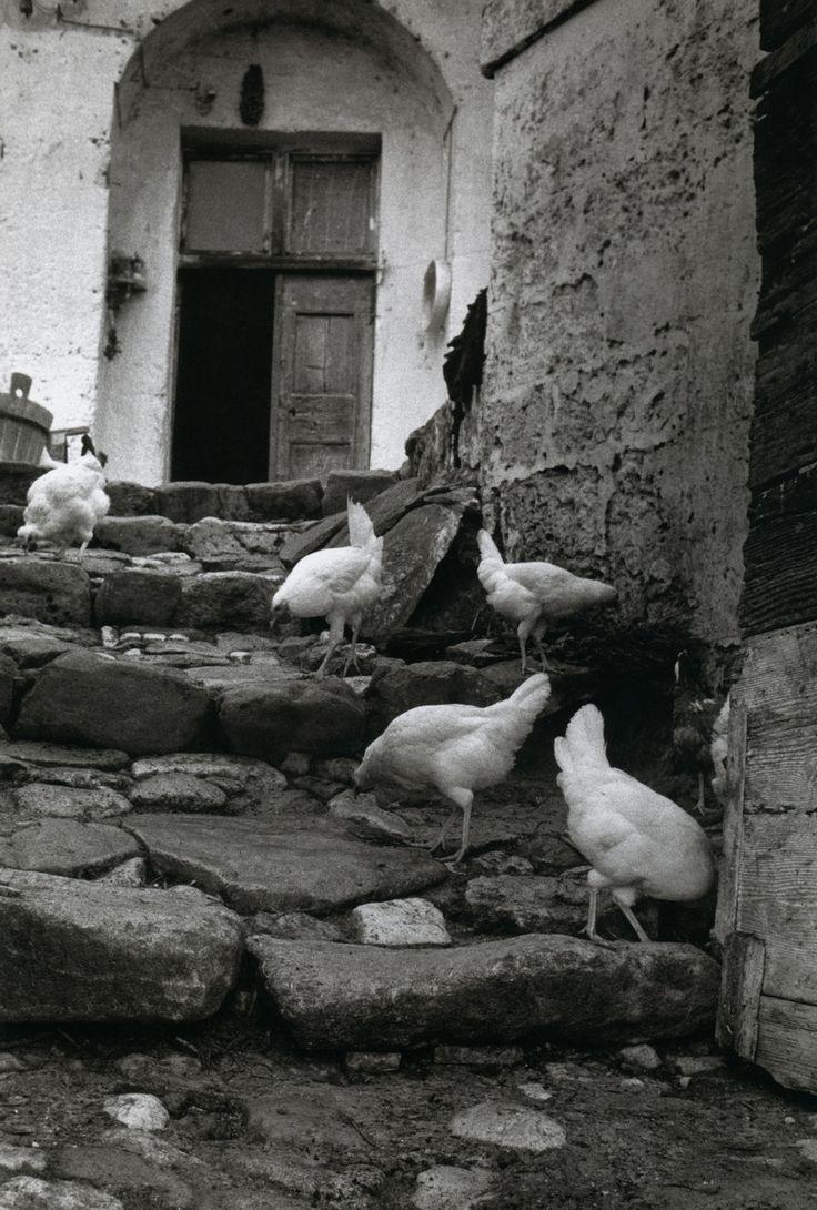 Matera, Sassi, Italy, 1954