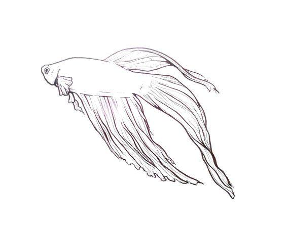 Beta Fish. Chinese Fighting Fish Illustration.   Etsy :: Gunter Does Art :: Paintings and Illustrations by Virginia Gunter
