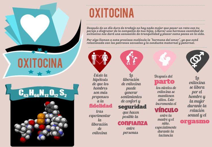 oxitocina.jpg (1278×888)