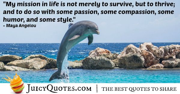 Quote About Life - Maya Angelou