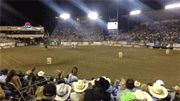 Horse Vs. Dirtbike Race - Now thats what I call Horsepower!!!