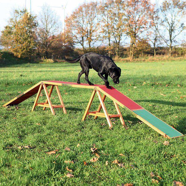 Buy Trixie Agility Dog Training Dogwalk At Chewy Com Free