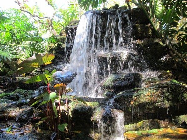 Waterfall Marie Selby Botanical Gardens Sarasota Florida