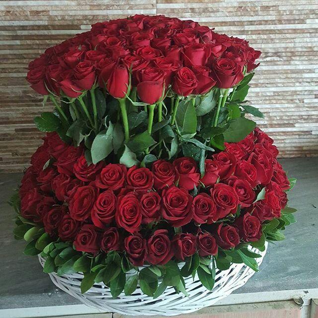 Pinterest Whywhyn0t Rose Flower Arrangements Fresh Flowers Arrangements Beautiful Flowers Photos