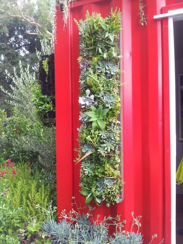 Vertical garden growing on a shipping container.