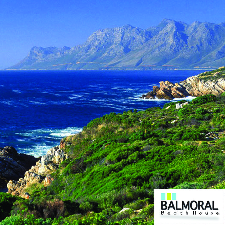 The Route is sandwiched between the aforementioned mountains and the Indian Ocean. The Outeniqua and Tsitsikamma indigenous forests are a unique mixture of Cape Fynbos and Temperate Forest and offer hiking trails and eco-tourism activities. #GardenRoute #IndianOcean #Mountains