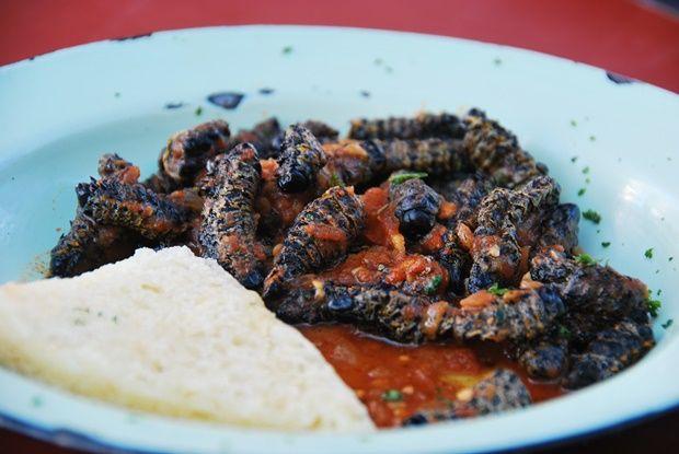 Eating Worms Video Mopani Variety, Weird Food | The Travel Tart Blog