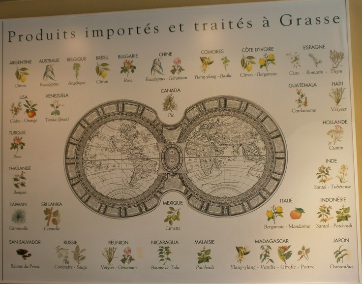 One of the main tasks of the Fragonard laboratory in the Plan de Grasse is to test the quality of the essential oils and materials imported from all parts of the world, before their used in perfume production, as indicated in this display.