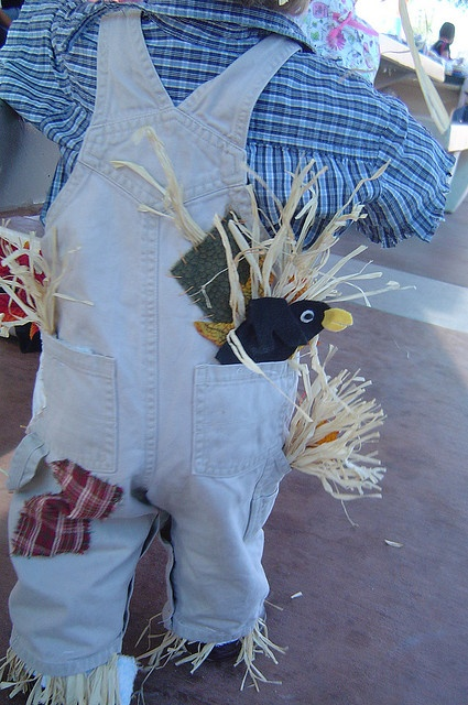 Ideas for scarecrow costume - love the crow