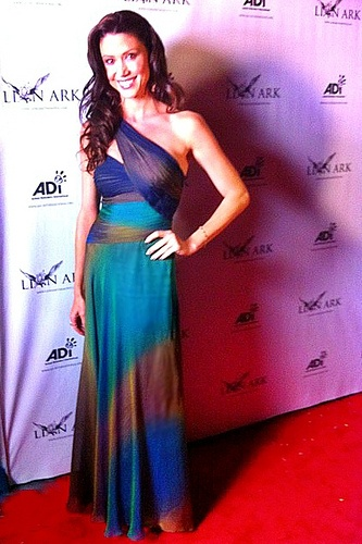 Shannon Elizabeth looking her best on the red carpet in Dalia MacPhee style 3716.