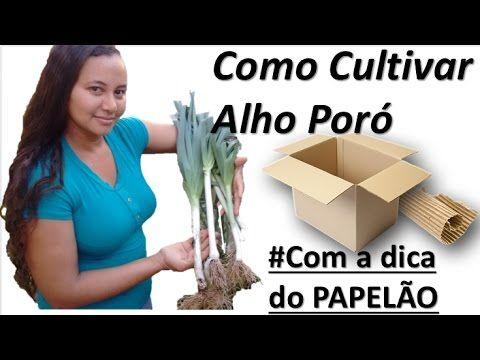 COMO FAZER UMA HORTA - VÍDEO PASSO A PASSO - YouTube