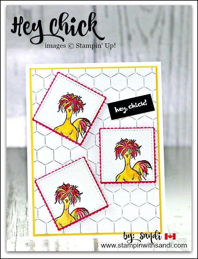Hey Chick Stampin Up card by sandi @ www.stampinwithsandi.com
