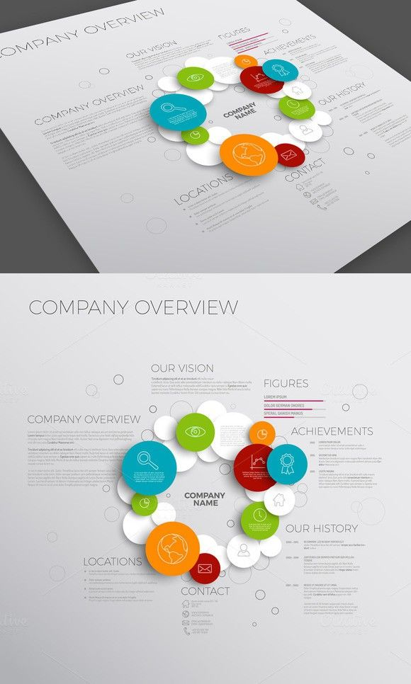 Company Overview Template. Business Infographic