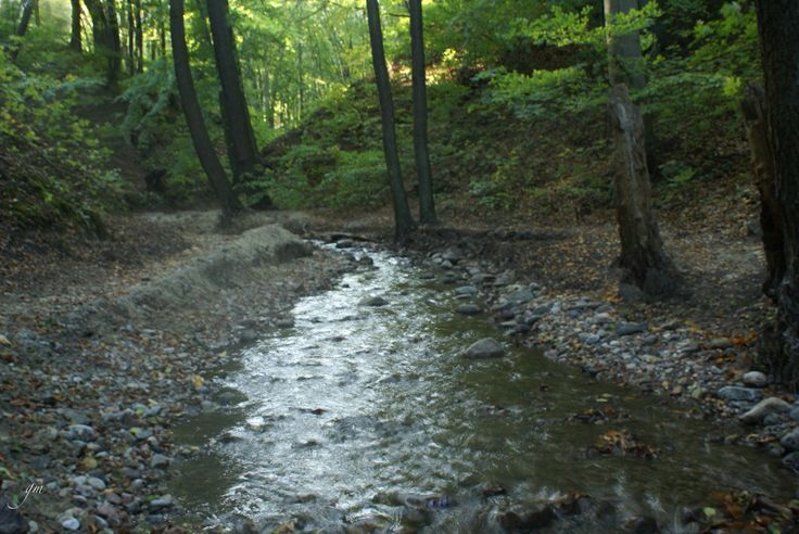 Potok Swelina